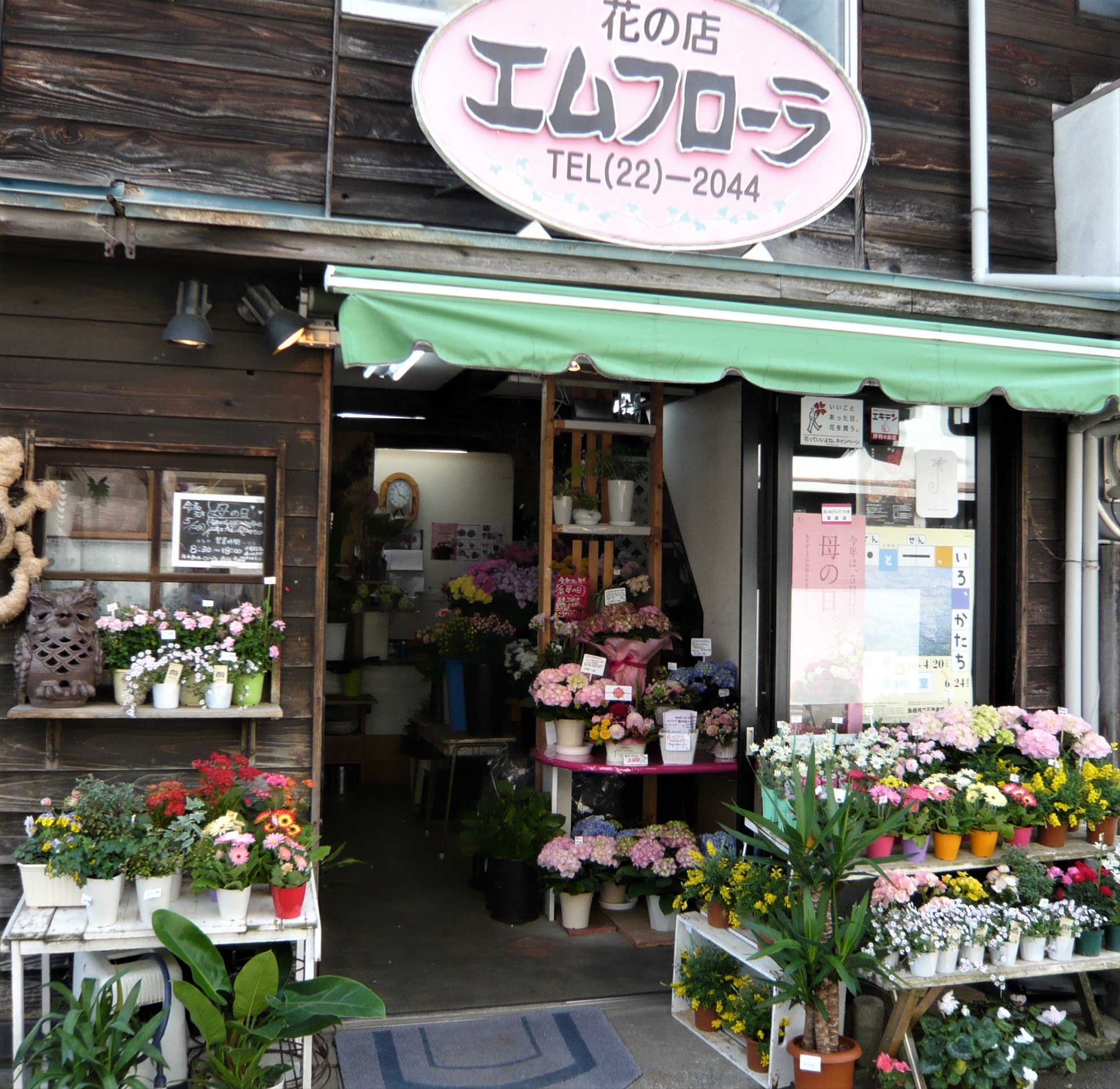 花の店 エムフローラの写真