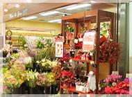 アイビー新中島店の写真