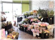 Ivy Flowers 東海店の写真