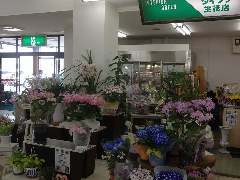 有限会社大福生花店の写真