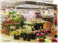 アイビーアスティ店の写真