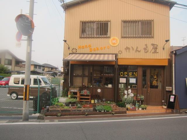 Hana Dokoro かんも屋の写真