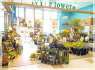 IvY Flowers 西尾寄住店の写真