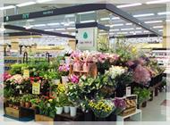 IvY Flowers 汐田橋店の写真