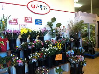 花夢館 江南店の写真