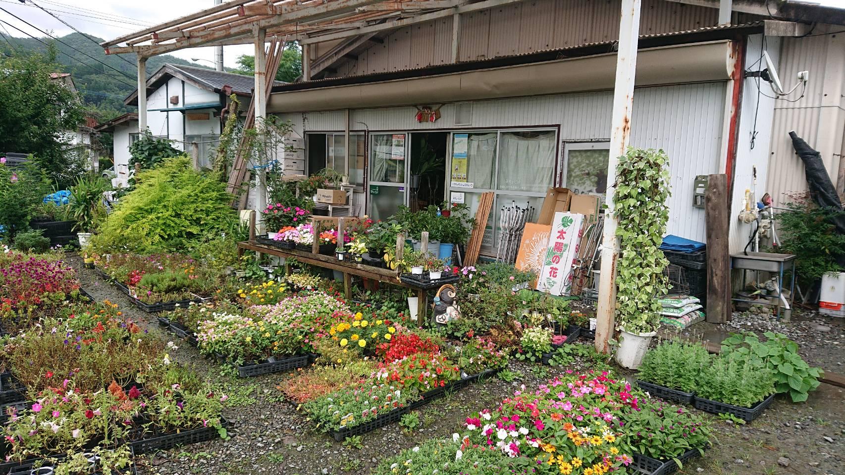 花の店 緑心苑の写真