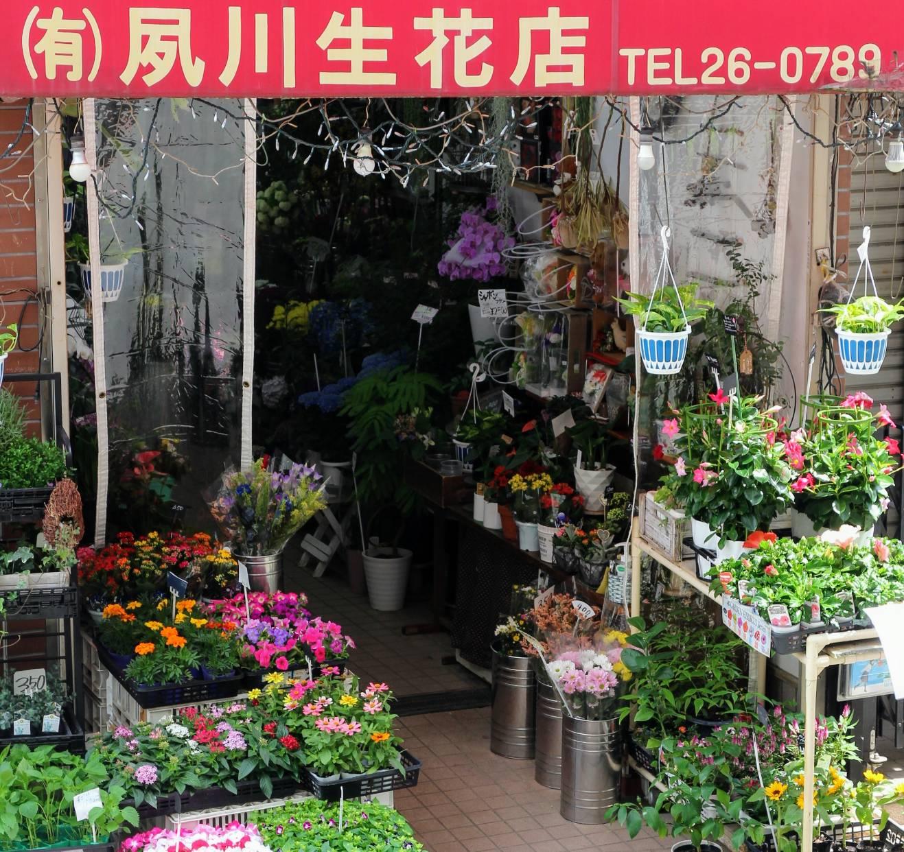 (有)夙川生花店の写真