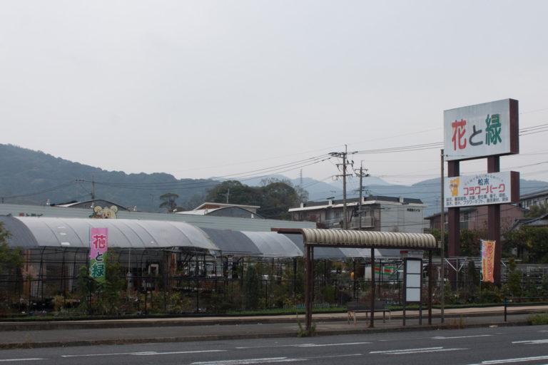 株式会社松末 フラワーパークの写真