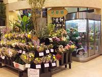 花街道 寺井店 の写真