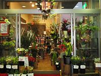 花街道 加賀店の写真