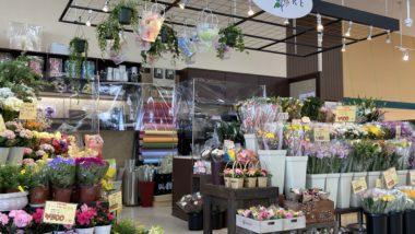 フラワーショップ ポレール千歳店の写真