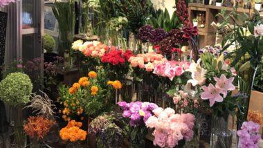 FLOWER COURT Slope すすきの店の写真