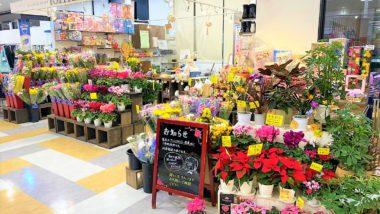 フラワーショップいしざか 鳥取大通り店の写真