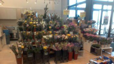 フラワーショップいしざか 昭和店の写真
