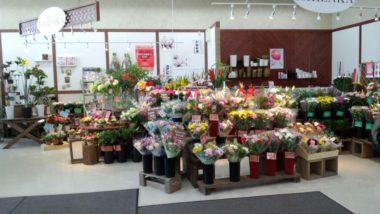 フラワーショップいしざか 桂岡店の写真